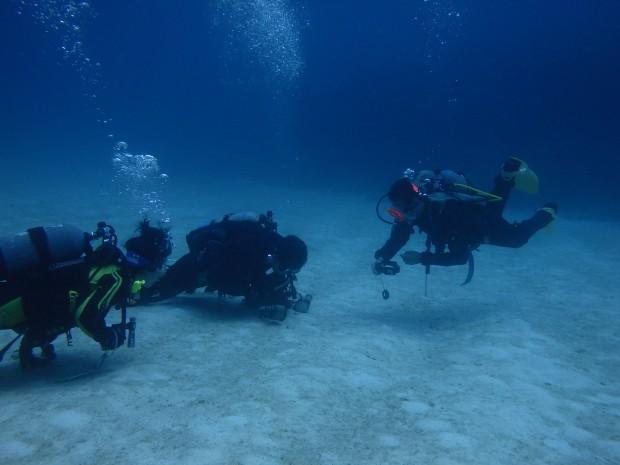 水底にダイバー
