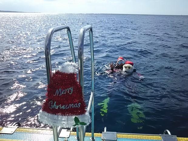 クリスマス★サンタと ダイビング!