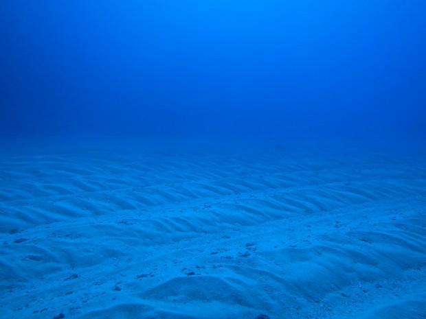 砂地の模様
