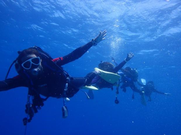 夏に突入して沖縄の海絶好調!連日の快適ボートダイビング!
