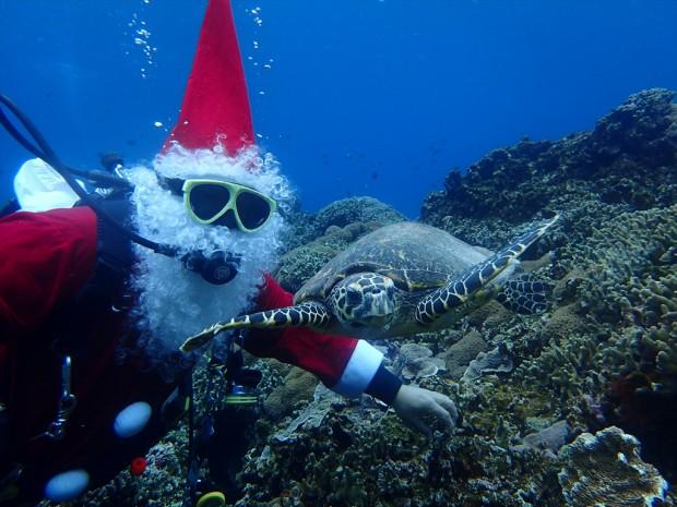 サンタとダイビング! クリスマス2018