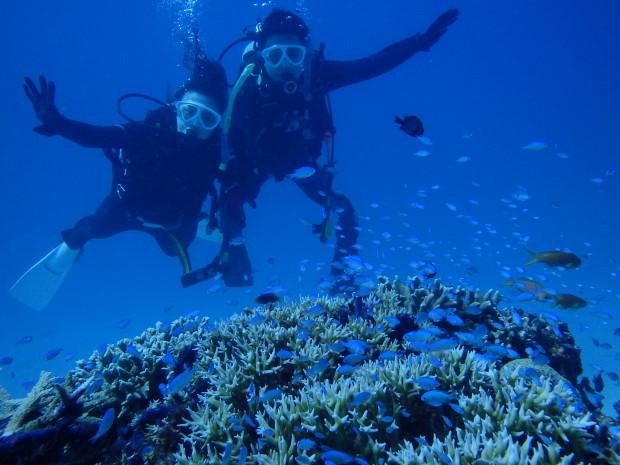 夫婦でダイビング!ケラマとチービシ2海域潜り歩き。昼は島上陸!