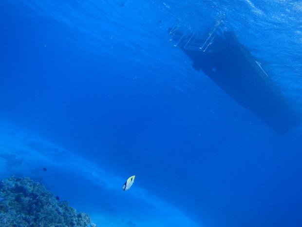 ボートと水底