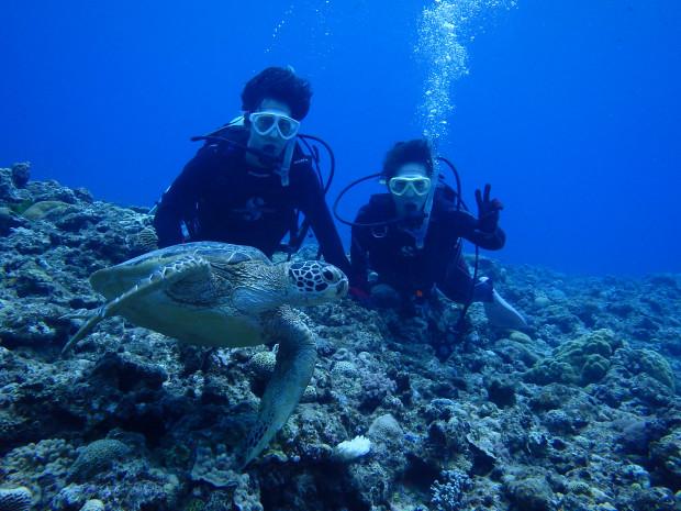 希望通りにカメ遭遇!土砂降りでも明るく穏やかな海の中!沖縄・ケラマダイブ